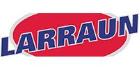 logo gruas y talleres larraun