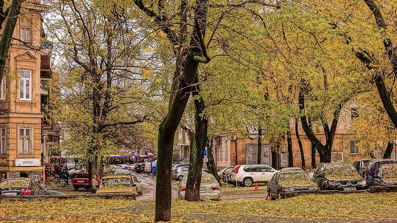Conducción en otoño