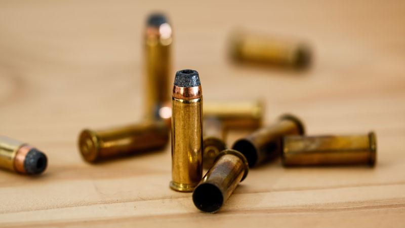 ¿Qué es el pasajero bala?
