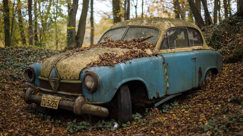 coche-zombi-en-el-bosque
